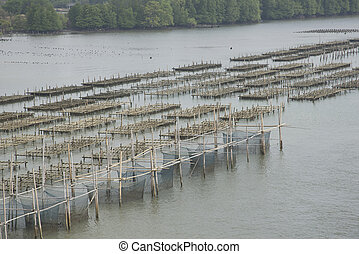 Oyster farm in sea Abstract background