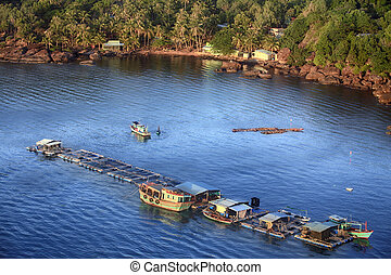 Oyster farm in Vietnam