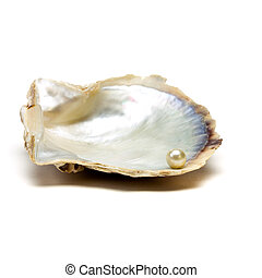 Oyster n Pearl - Pearl resting on open oyster shell to...