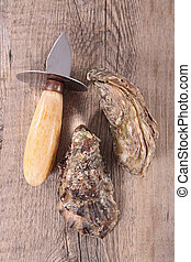 oyster on wood background-top view