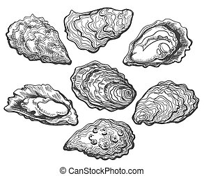 Oyster shell set