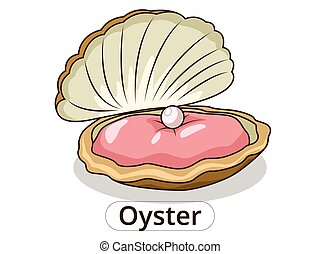 Oyster underwater animal cartoon illustration