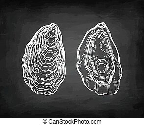 Oysters chalk sketch on blackboard background. Hand drawn ...