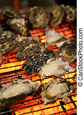 oysters cooking on a barbeque