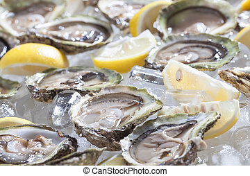 Oysters. - Oysters in a bowl with lemons.