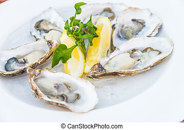 Oysters - Selective focus point on fresh oysters shell with ...