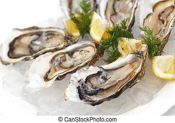 Oysters with lemon and dill on plate with ice
