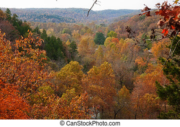 ozarks forest in fall - ozarks forest in missouri during ...
