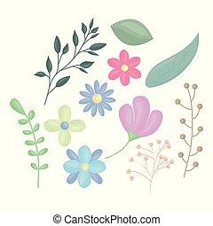 ozdoba, kwiaty, wektor, liście, ilustracja