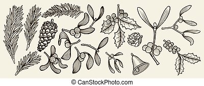 ozdoba, rośliny, tradycja, boże narodzenie