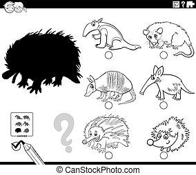 página, juego, caricatura, animales, colorido, salvaje, sombras, libro