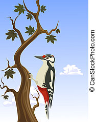 pájaro carpintero, vector, árbol, pegajoso, tronco