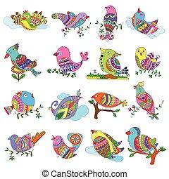 pájaro, colorido, colección