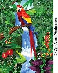 pájaro, en, el, bosque tropical