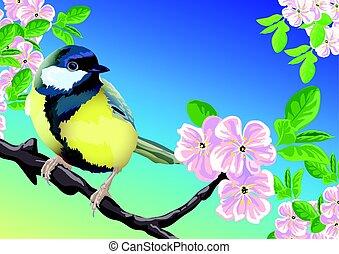 pájaro, en un rama