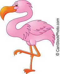 pájaro, flamenco, divertido