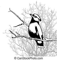pájaro, madera, plano de fondo, silueta