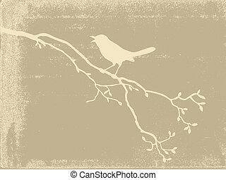 pájaro, silueta, en, viejo, papel, vector, ilustración