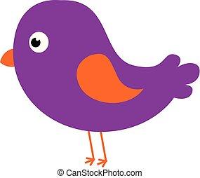pájaro, vector, visto, lado, plano de fondo, caricatura, aislado, conjunto, blanco, púrpura, color, o, ilustración