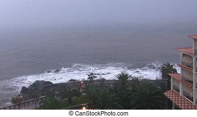 pálma fa, és, hotel, képben látható, esős nap