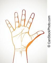 pálma, kéz