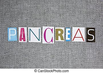 páncreas, concepto