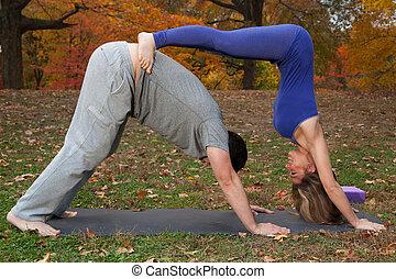 párosít, cselekedet, jóga, a parkban
