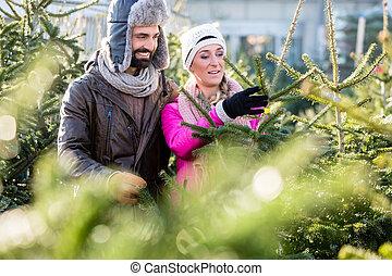 párosít, vásárlás, karácsonyfa, képben látható, piac
