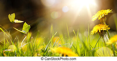 páscoa, flor mola, experiência;, fresco, flor, e, borboleta amarela, ligado, grama verde, fundo