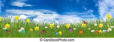 páscoa, prado, com, coloridos, ovos páscoa