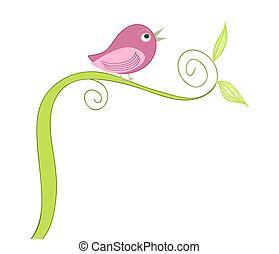 pássaro, cute, cantando