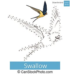 pássaro, desenhar, vetorial, andorinha, aprender