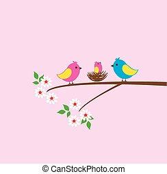 pássaro, família