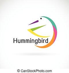 pássaro, fundo, vetorial, desenho, branca, logo., humming