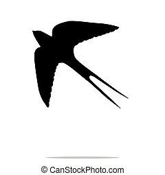 pássaro, silueta, pretas, animal, andorinha