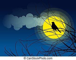 pássaro, silueta, sentando, ligado, um, filial árvore, fundo, de, a, moonlight.