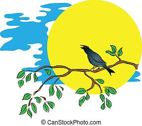 pássaro, uma filial