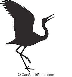 pássaro, vetorial