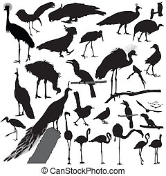 pássaro, vetorial, silueta, jogo