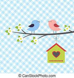 pássaros, canta, em, springtime