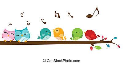 pássaros, cantando, ligado, a, ramo