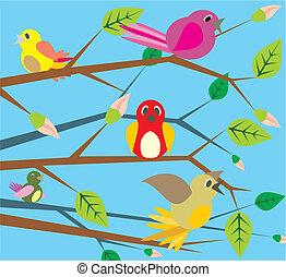 pássaros, cantando, -, primavera