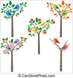 pássaros, ligado, árvore