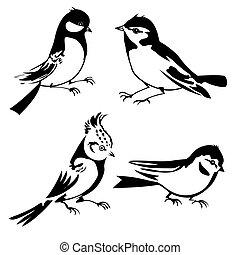 pássaros, silueta, branco, fundo, vetorial, ilustração