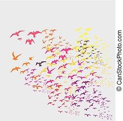 pássaros, silueta, conjuntos, vetorial, arte
