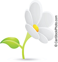 pâquerette, fleur blanche, icône