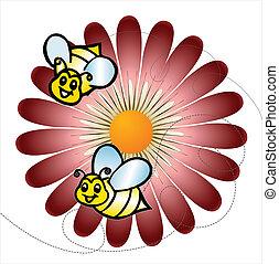 pâquerettes, abeilles, coloré, pré