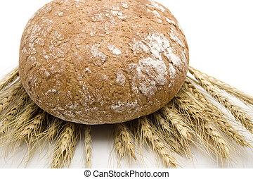 pão centeio, com, trigo, orelha