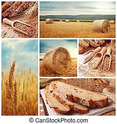 pão, trigo, colher