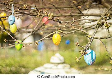 påsk eggar, hängande, a, träd